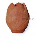Coconut Husk Flower Vase