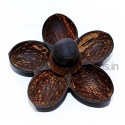 Coconut Shell 5 in 1 Tray