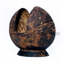 Coconut Shell Napkin Holder